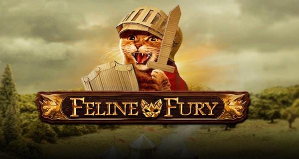 Feline Fury Gratis Spielen